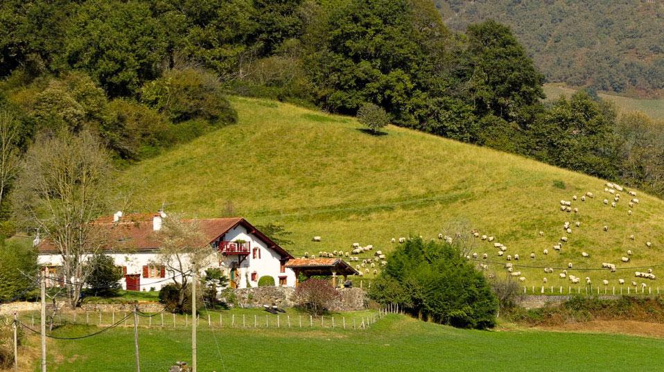 Maison amesto a chambres d 39 h tes saint tienne de ba gorry - Terrasse vue jardin marseille saint etienne ...
