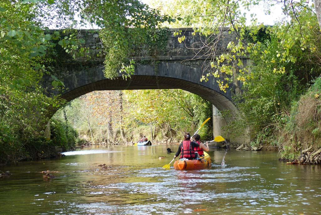 Jungkle Canoe