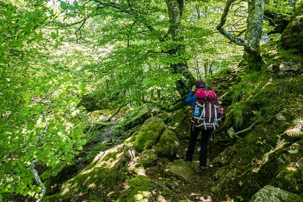 randonnée GR10 pays basque