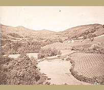 vignoble d'Irouleguy