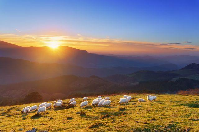 Paysage du Pays Basque